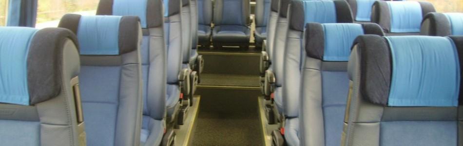 <h4>Mini-Bus e Bus até 54pax</h4>